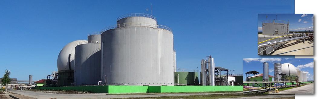 Biogas Plant for EFB + POME