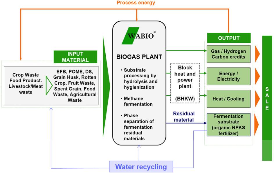 Wabio Process